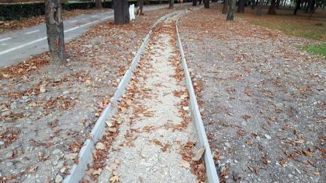 Mai avem nevoie şi de iarbă! Lucrările la pista de alergare din parcul Brătianu distrug zone verzi (FOTO)