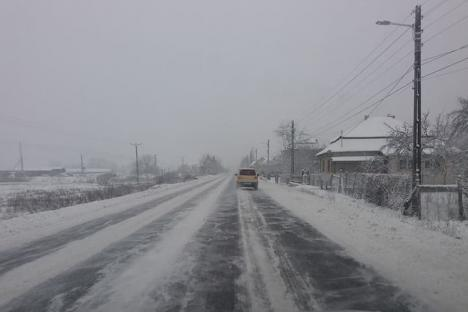 Ultimele ninsori au dat peste cap traficul în judeţ: Poliţia rutieră a împărţit amenzi de peste 25.000 lei firmelor de deszăpezire (FOTO)