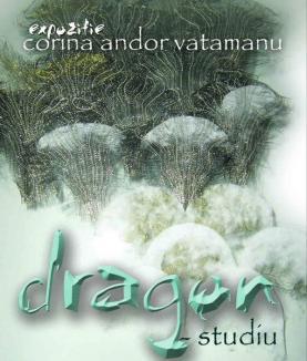 Dragon 'îmbrăcat' în textile