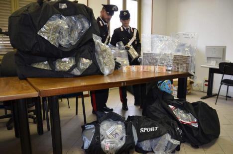 Români arestați în Italia, după ce polițiștii au găsit într-un TIR o jumătate de tonă de marijuana!