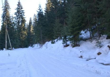 Turişti blocaţi cu maşinile în zăpadă, salvaţi de jandarmi
