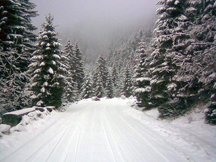 Trei sectoare de drumuri judeţene închise din cauza zăpezii