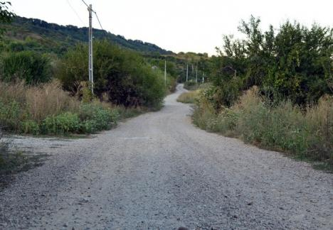Consiliul Local Oradea a aprobat amenajarea viitoarelor drumuri de legătură cu Oşorhei şi Sîntandrei