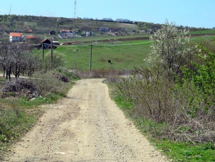 Opt milioane de lei: Drum nou spre Paleu, prin livezile din zona spitalului TBC
