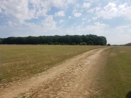 Drumul care va lega peste câmpuri Oradea de Nojorid va costa circa 9,5 milioane de euro (FOTO)