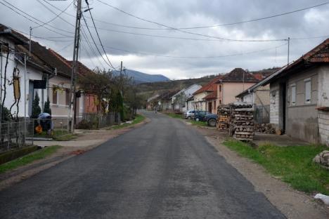 """Drumul şi tunul: PSD şi UDMR Bihor au dat 2,5 milioane euro din banii județului propriilor primari, care i-au """"îngropat"""" în lucrări îndoielnice (FOTO)"""