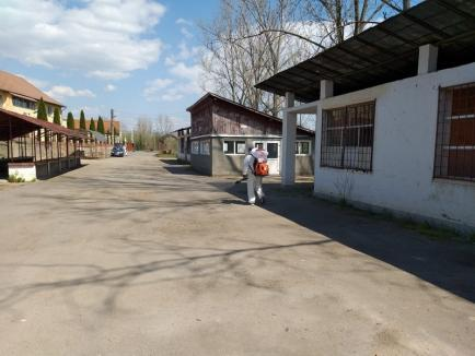 Colonie în carantină: 500 de romi din Vadu Crișului vor fi izolați sub paza jandarmilor, după ce au refuzat testarea anticoronavirus (FOTO)