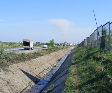 Primăria amenajează un nou spaţiu verde lângă blocurile ANL din Decebal