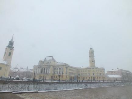 Oradea e iar albă: RER a scos pe străzi toate utilajele de deszăpezire (FOTO)