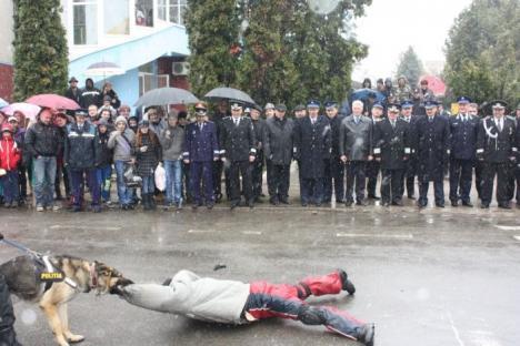 Mascaţii s-au luat la trântă în plin centrul Beiuşului (FOTO)
