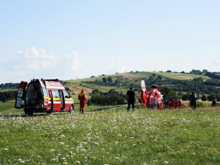 Un copil de 5 ani din Şinteu, dus cu elicopterul SMURD la Oradea, după ce a fost muşcat de un şarpe (FOTO)