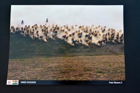 O seară în India: cel mai premiat fotograf indian și-a expus fotografiile la Filarmonica din Oradea (FOTO)