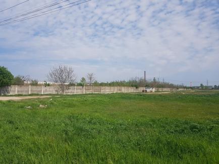 Ferma Nutripork, sursa mirosurilor urâte din Oradea și Sântandrei, s-a închis definitiv (FOTO)