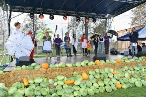 Concursuri, mâncare bună şi hohote de râs la Festivalul Verzei din Borş (FOTO / VIDEO)