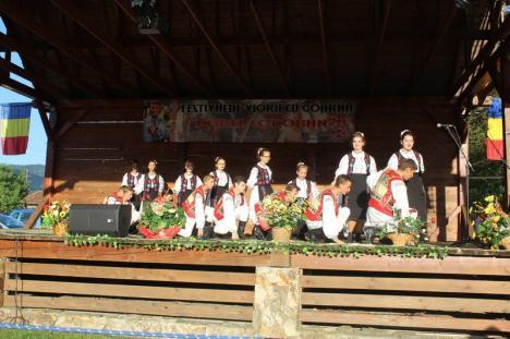 Cine sunt premianţii Festivalului viorii cu goarnă 'Dorel Codoban' (FOTO)