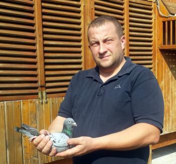 Campionatul porumbeilor voiajori: Vancea Flavius câştigă autoritar etapa de viteză Győngyős