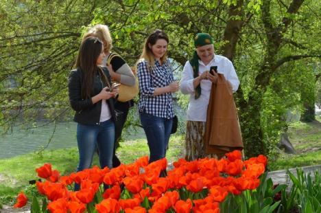 Cadou pentru orădeni: Florarii au dat culoare Parcului Libertăţii (FOTO)