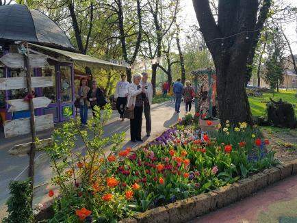 Florarul Marius părăseşte Oradea! Buticul cu flori din Parcul Libertăţii a fost deja închis (FOTO)