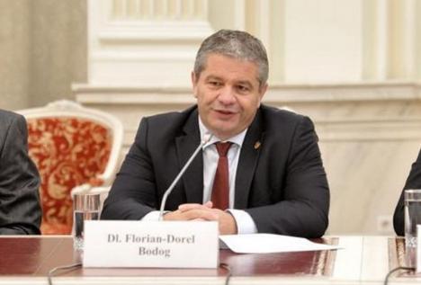 Scut în jurul lui Bodog: Senatul nu permite urmărirea penală a fostului ministru. PSD-istul se pretinde victima unei răzbunări