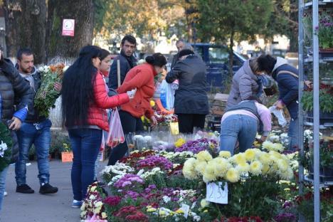 ADP Oradea: Licitaţie cu strigare pentru vânzarea florilor de Ziua Morţilor