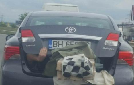 Fotografia săptămânii în traficul din Oradea: Pasager în portbagaj