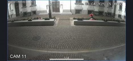 Atac la flori: Un bărbat, filmat în timp ce fura din grădina Episcopiei Greco-Catolice a Oradiei  (FOTO / VIDEO)