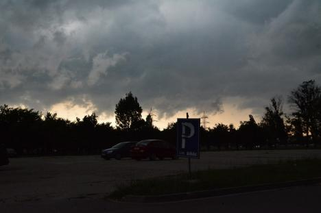 Efectele furtunii: Mai mulţi copaci doborâţi în Oradea şi în Bihor, două persoane evacuate. Pompierii, în alertă(FOTO / VIDEO)