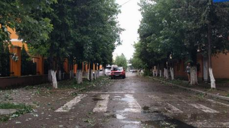 Furtună în Aleşd: Mai multe persoane au avut nevoie de îngrijiri medicale, după ce au fost lovite de grindină (FOTO)