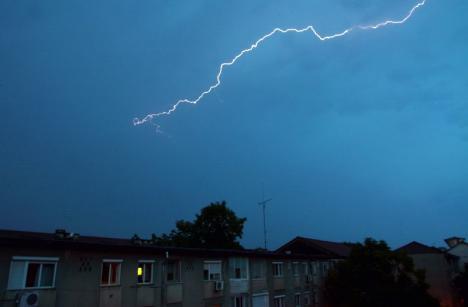 Sfaturi de la ISU: În timpul unei furtuni, nu staţi lângă copaci sau stâlpi de electricitate