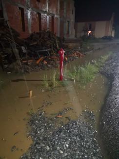 Drumuri blocate în Bihor, din cauza furtunilor, acoperiș lovit de trăsnet. Judeţul, din nou sub cod galben de vreme rea (FOTO / VIDEO)