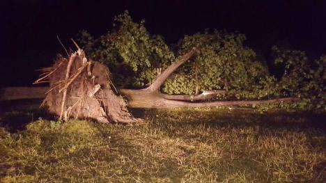 Toţi turiştii au plecat din Bulz. Prefectul Ioan Mihaiu: 'Zona arată dezastruos' (GALERIE FOTO ȘI VIDEO ȘOCANT)