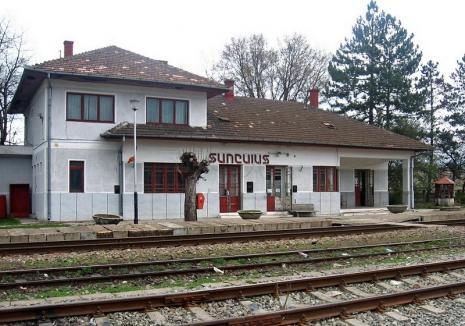 O nouă tâlhărie în tren: Tânără atacată în Staţia Şuncuiuş şi lăsată fără telefonul mobil. Autorul a fost prins