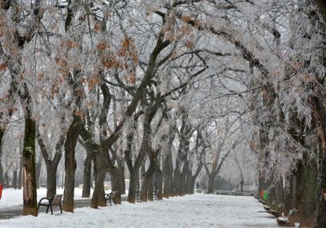 Vine frigul! Avertizare de vreme rea inclusiv în Bihor