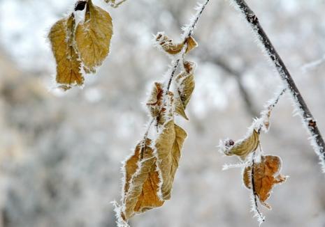 România, lovită de un val de aer polar. Cum va fi vremea în perioada următoare
