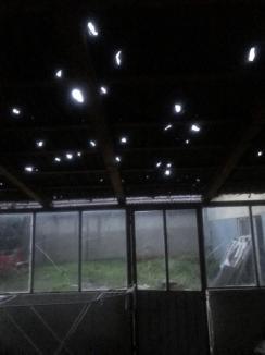 Prăpăd în Chişlaz! Furtuna puternică şi gheaţa de mari dimensiuni au deteriorat copaci şi acoperişuri (FOTO / VIDEO)