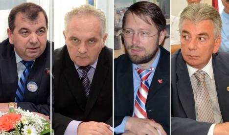 Rezultate finale: Prin redistribuire, Bihorul va avea 16 parlamentari