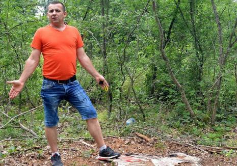 Pădurarul care a tăiat ilegal arbori de 30.000 de lei, susţinând că l-a pus şeful Ocolului Silvic Oradea, a fost dat pe mâna procurorilor