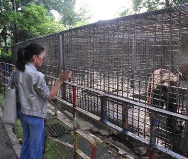 Grădina Zoologică a fost închisă până în 2012