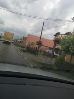 S-a abătut grindina asupra judeţului Bihor. În Oradea, furtuna a şi doborât trei copaci (FOTO / VIDEO)