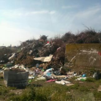 Cât să umple 71 de TIR-uri! Comisarii de mediu au găsit mormane de mizerii la marginea oraşelor şi satelor din Bihor (FOTO)
