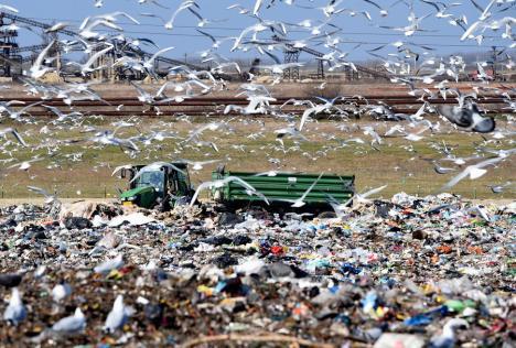Oradea, soluţie scumpă: Ca să descurajeze alte oraşe să-şi aducă gunoaiele aici, Primăria a scumpit taxele de depozitare la Eco Bihor