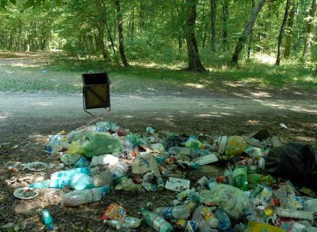 Nişte gunoaie... Cinci orădeni, daţi pe mâna Poliţiei după ce gunoaiele lor au fost găsite în pădurea din Tinca
