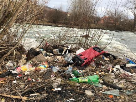 ABA curăţă malurile: Peste 800 de metri cubi de gunoaie adunate de pe malul stâng al Crişului Repede, în Oradea! (FOTO)