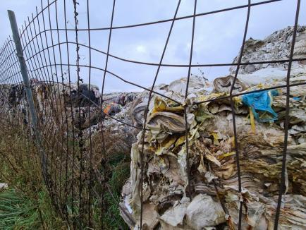 Pubela Bihor: Afaceriști conectați cu Mafia au transformat Bihorul în groapa de gunoi a italienilor (FOTO)