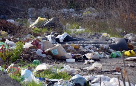 O firmă din Bihor va curăţa şanţurile şi parcările de pe marginea drumurilor judeţene