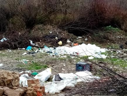 Amendă uriaşă pentru o primărie din Bihor, după ce comisarii de mediu au găsit gunoaieîngropate în albia Crişului Negru, în plină arie protejată! (FOTO)