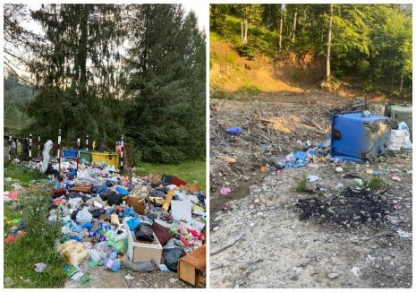 """Ne enervează: Un munte de gunoaie """"îngroapă"""" satul de vacanţă Coada Lacului (FOTO / VIDEO)"""