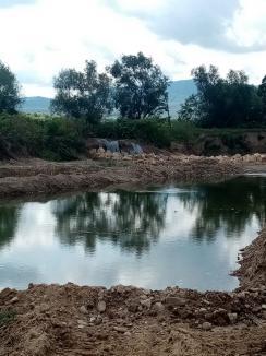 Descoperire uluitoare în Bihor: Crişul Negru a fost betonat, comisarii de Mediu cer dosare penale (FOTO / VIDEO)