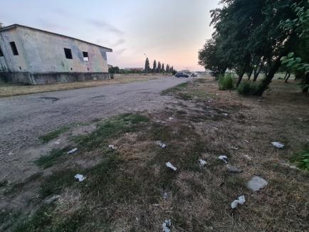 Descoperire... mizerabilă: În spatele Muzeului Ţării Crişurilor, o 'pădure' de gunoaie (FOTO)