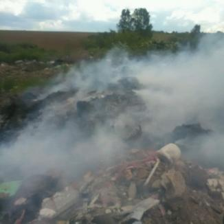 Şi primăriile încalcă legea! O primărie din Bihor, amendată pentru că a incendiat gunoaie, alta pentru că a încercat să le îngroape